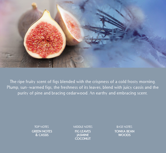 Fig scented oil for fireplaces and burners