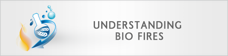 General info about bio ethanol fireplaces